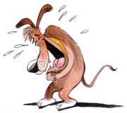 laugh-dog.jpg