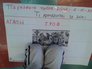 Παγκόσμια ημέρα ζώων (14)